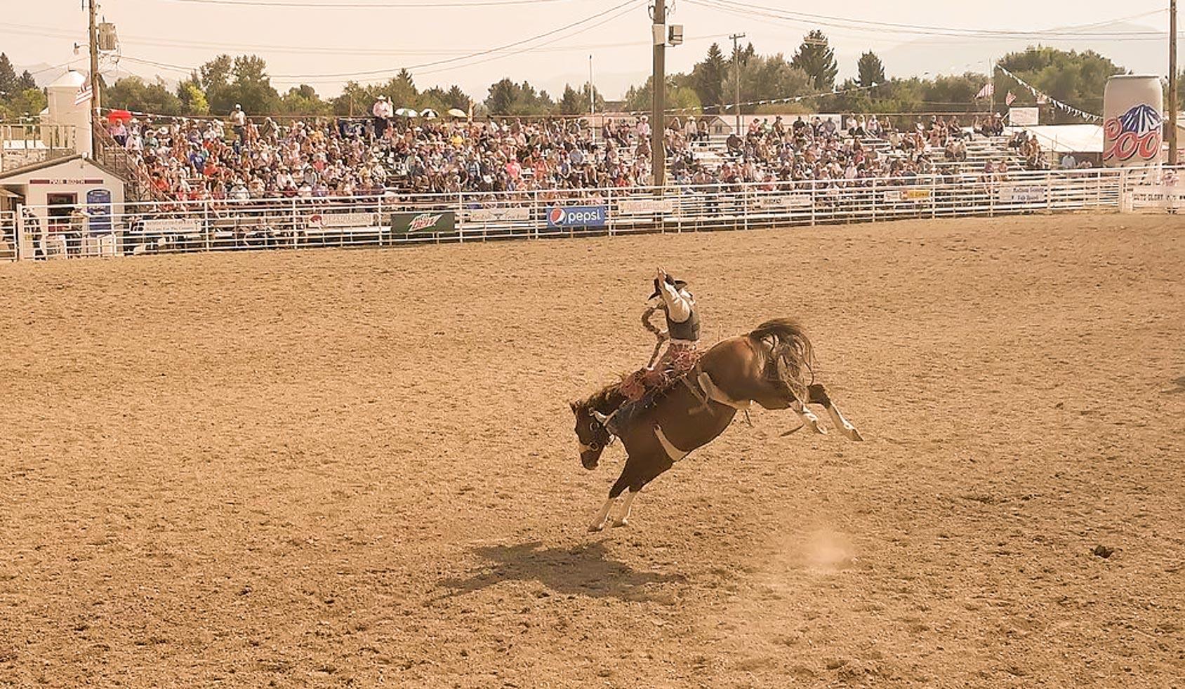 Jaycee's PRCA Rodeo