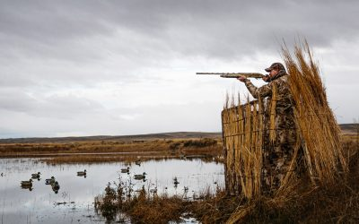 Tips for Buying Recreational Property and Hunting Land