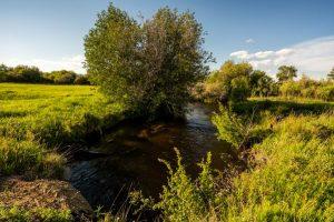 Saul Creative-52 Paige Lane-Twin Bridges Montana-Stonefly Lodge-Nate FInch-8 Land Co-1567
