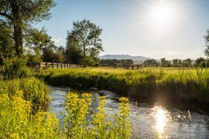 Saul Creative-52 Paige Lane-Twin Bridges Montana-Stonefly Lodge-Nate FInch-8 Land Co-1600