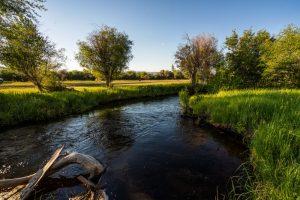 Saul Creative-52 Paige Lane-Twin Bridges Montana-Stonefly Lodge-Nate FInch-8 Land Co-1605