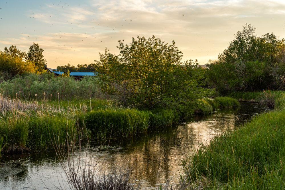 Saul Creative-52 Paige Lane-Twin Bridges Montana-Stonefly Lodge-Nate FInch-8 Land Co-1668